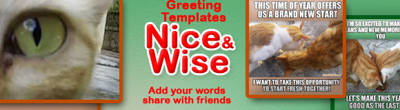 Nice&Wise Greeting Cards Templates