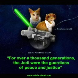 Princess Ginger and Cake Freewalker, PG Cat Family the guardians of peace and justice, Jedi