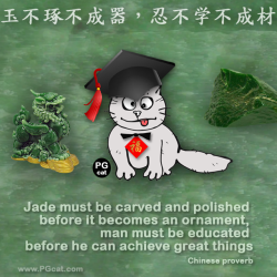 Jade must be carved and polished before it becomes an ornament, man must be educated before he can achieve great things. | 玉不琢不成器,忍不学不成材