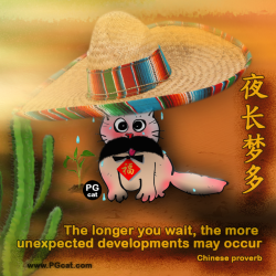 The longer you wait, the more unexpected developments may occur | 夜长梦多