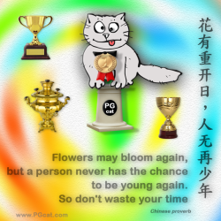 Flowers may bloom again, but a person never has the chance to be young again. So don't waste your time. | 花有重开日,人无再少年