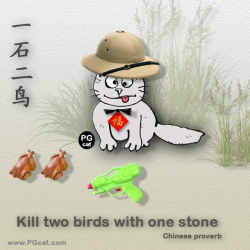 Kill two birds with one stone | 一石二鸟