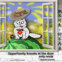 Opportunity knocks at the door only once | 机不可失,时不再来