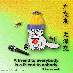 A friend to everybody is a friend to nobody | 广交友,无深交