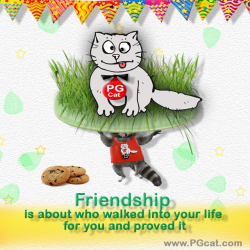 Friendship is about who walked into your life for you and proved it