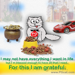 I may not have everything I want in life but I`m blessed enough to have all that I need. For this I am grateful