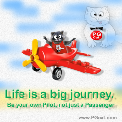 Life is a big journey. Be your own Pilot, not just a Passenger