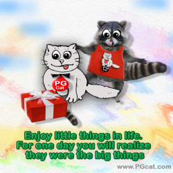 Enjoy little things in life. For one day you will realize they were the big things