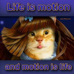 Life is motion ... and motion is life