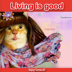 Living is good. But I'd prefer to live good somewhere else