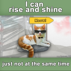 I can rise and shine, just not at the same time