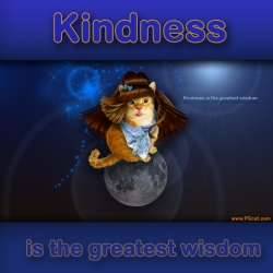 Kindness is the greatest wisdom.