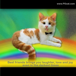 Best friends brings you laughter, love and joy even in the darkest times.