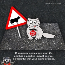 If someone comes into your life and has a positive impact on you, be thankful that your paths crosses.