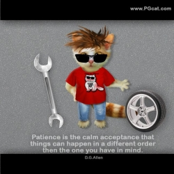 Patience is the calm acceptance that things can happen in a different order then the one you have in mind. D.G.Allen.