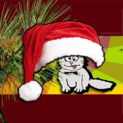 Cristmas and New Year Greeting Cards Templates PG Cat 3